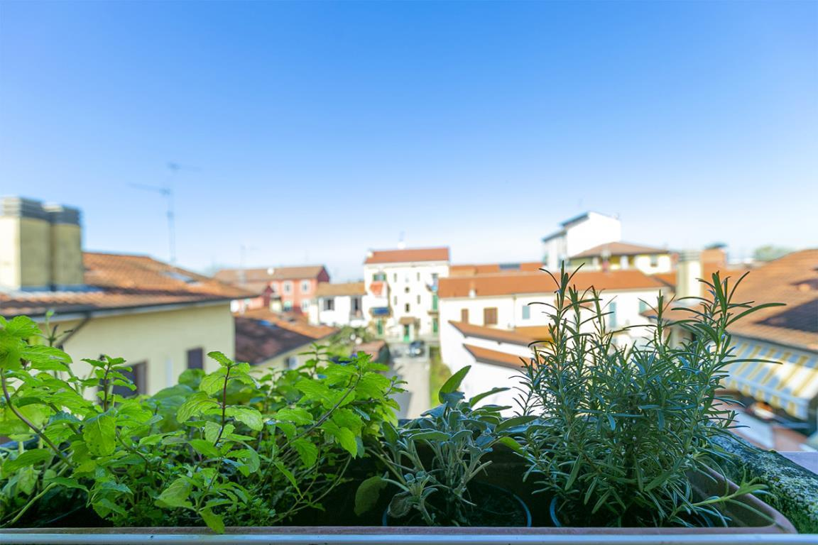 Appartamento in Vendita a Mediglia: 3 locali, 90 mq