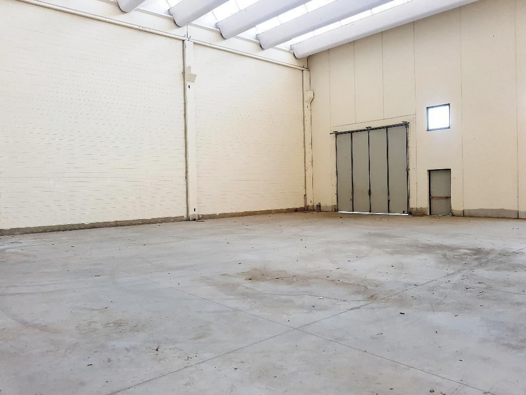 Nuovo capannone  in vendita - 1055 mq