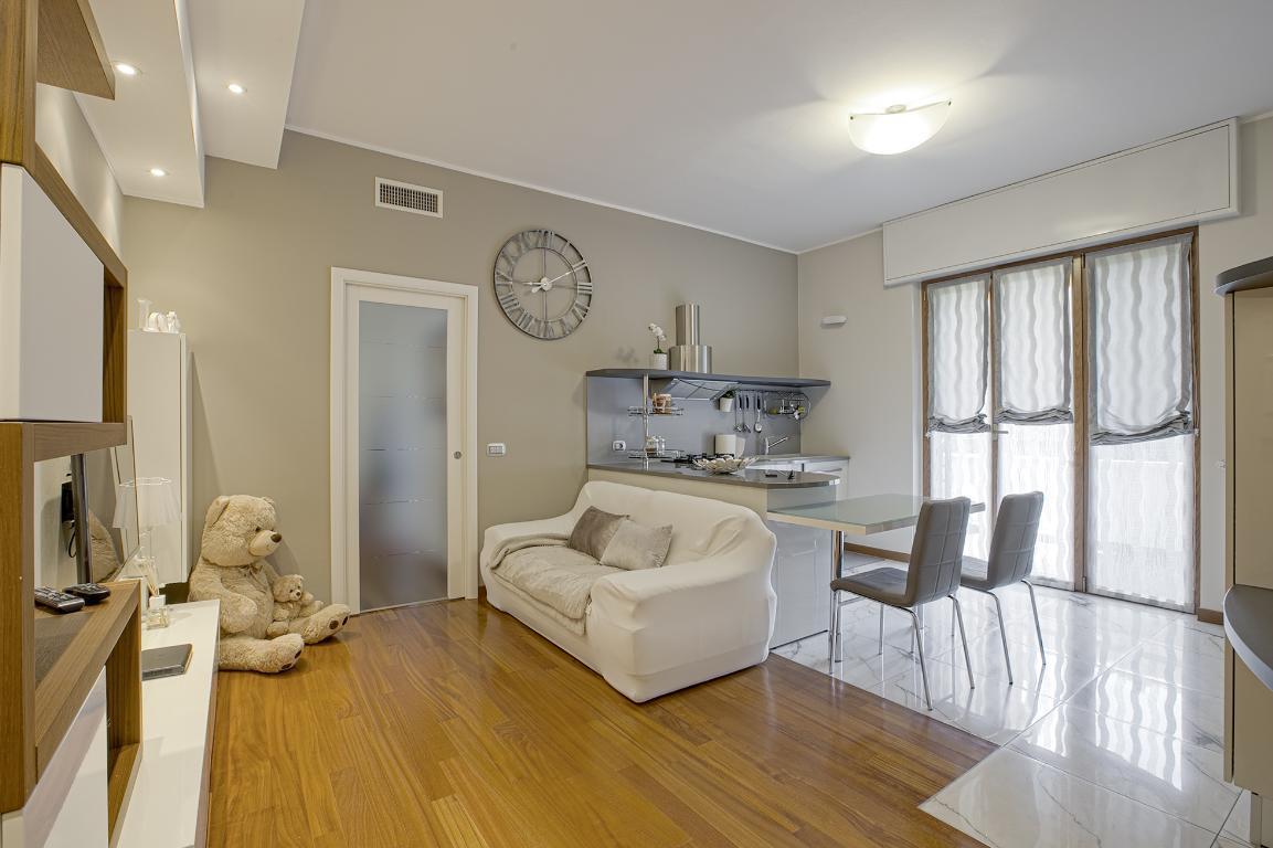 Appartamento in Vendita a San Donato Milanese: 2 locali, 66 mq