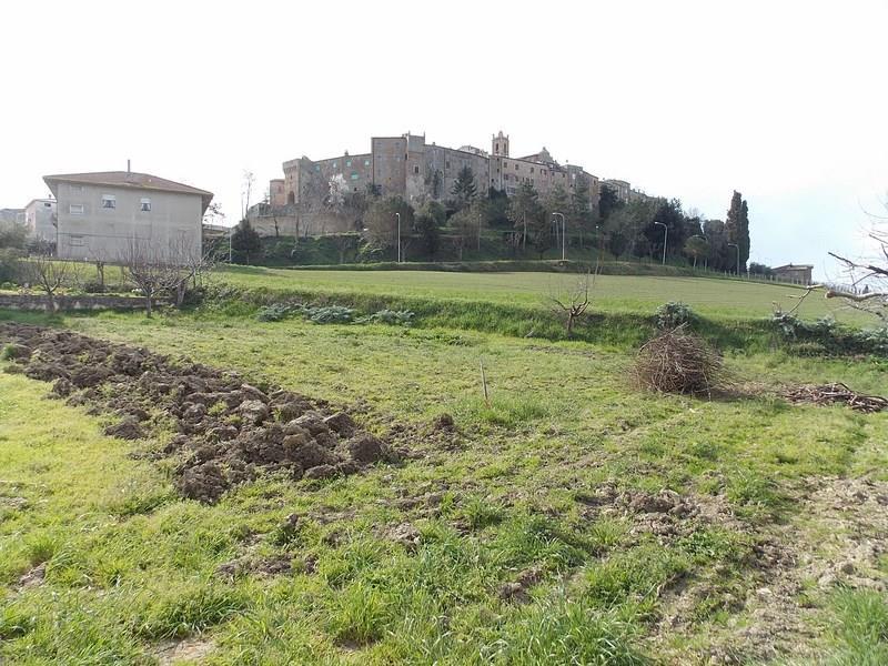 Casa indipendente in affitto a Cossignano con terreno