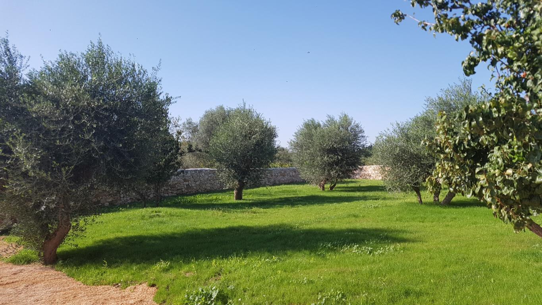 Bilocale Bari Via Russo Frattasi 9