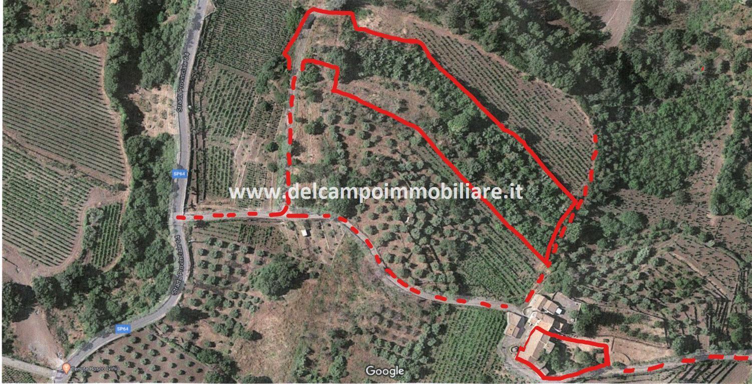 terreno in vendita a castiglione di sicilia
