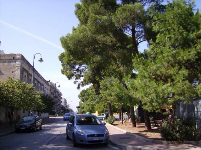 Vendita Bari Vico XX Corso Vittorio Emanuele