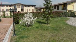 Bilocale Liscate Via San Paolo Della Croce 12 4