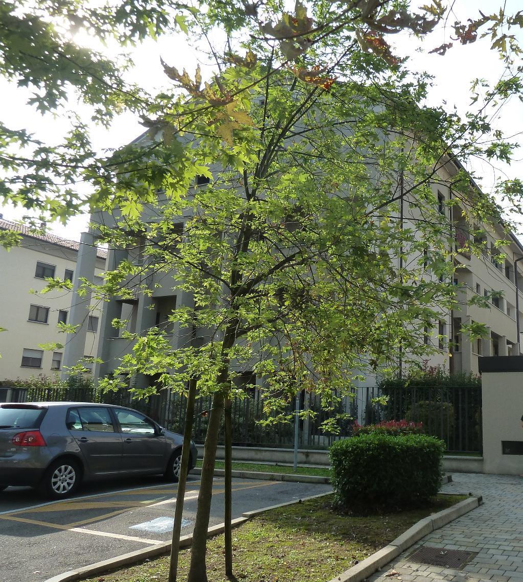 Appartamento in vendita a Monza, 2 locali, zona Località: REGINA PACIS, prezzo € 140.000   Cambiocasa.it