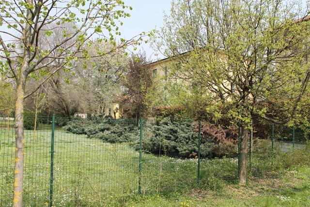 Appartamento in Affitto a Monza: 3 locali, 100 mq
