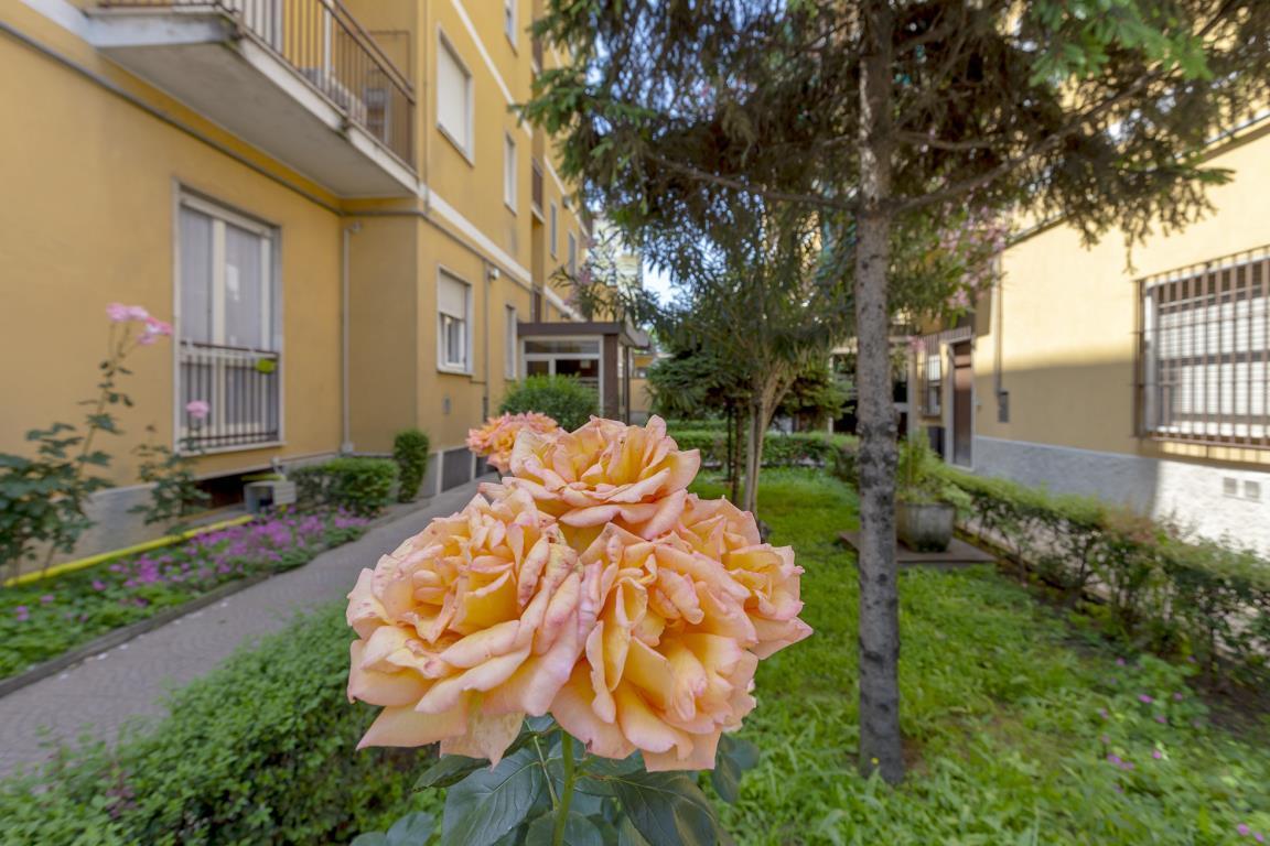 Appartamento in Vendita a San Donato Milanese: 2 locali, 64 mq