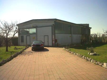 Capannone in Vendita a Borgo San Giovanni: 1 locali, 250 mq